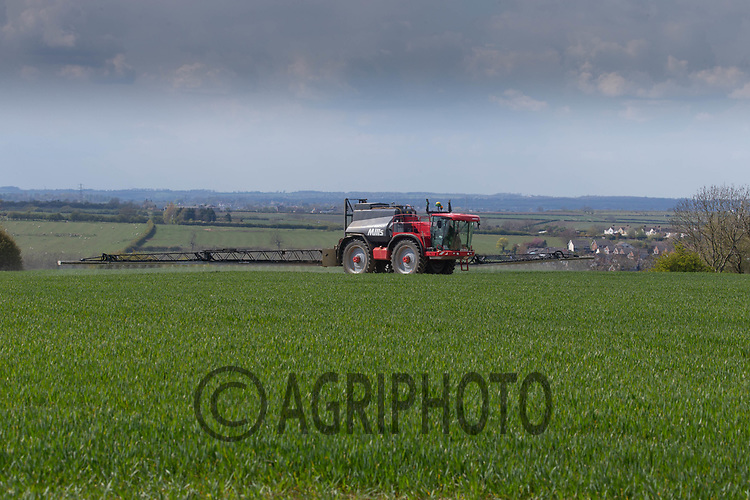 30-4-2021 Spraying fungicide on to Winter cereals <br /> ©Tim Scrivener Photographer 07850 303986<br />      ....Covering Agriculture In The UK....
