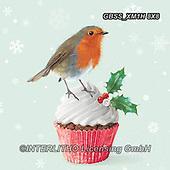 Sandra, CHRISTMAS SYMBOLS, WEIHNACHTEN SYMBOLE, NAVIDAD SÍMBOLOS, paintings+++++,GBSSXM1H8X8,#xx# ,red robin