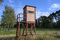 GERMANY, lower saxonia, Forest, hunting tower / DEUTSCHLAND, Niedersachsen, Wald, Hochsitz zur Jagd