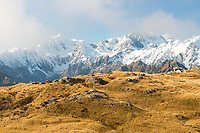Alpine rocks and tussock country and Southern Alps with highest peaks Aoraki Mount Cook, Mount Tasman, Westland Tai Poutini National Park, UNESCO World Heritage Area, West Coast, New Zealand, NZ