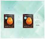Sense Aroma  lamp Packaging Jan 2020
