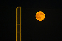 A fruit moon looms over foul territory during a game between the AZL Cubs and AZL Giants on September 5, 2017 at Scottsdale Stadium in Scottsdale, Arizona. AZL Cubs defeated the AZL Giants 10-4 to take a 1-0 lead in the Arizona League Championship Series. (Zachary Lucy/Four Seam Images)