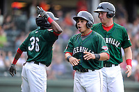 Catcher Jayson Hernandez (12) of the Greenville Drive, center, shouts after scoring a run in a game against the Charleston RiverDogs on Sunday, May 19, 2013, at Fluor Field at the West End in Greenville, South Carolina. Jose Vinicio, (36) is at left, with David Chester (44), right. Charleston won, 9-7. (Tom Priddy/Four Seam Images)