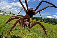 17-19  July, 2009, Birmingham, Alabama USA.Big A%& Spiders! Roam the infield at Barber Motorsports Park..©2009 F.Peirce Williams, USA.