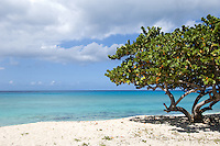The beach near Sandy Ground.Fredericksted, ST Croix, US Virgin Islands