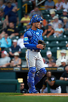 Toronto Blue Jays catcher A.J. Jimenez (8) during a Spring Training game against the Pittsburgh Pirates on March 3, 2016 at McKechnie Field in Bradenton, Florida.  Toronto defeated Pittsburgh 10-8.  (Mike Janes/Four Seam Images)