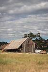 Weathered wooden barn, Calaveras County, Calif.
