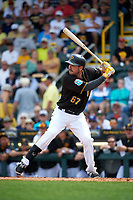 Pittsburgh Pirates right fielder Matt Joyce (67) at bat during a Spring Training game against the Toronto Blue Jays  on March 3, 2016 at McKechnie Field in Bradenton, Florida.  Toronto defeated Pittsburgh 10-8.  (Mike Janes/Four Seam Images)