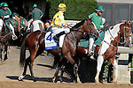 """LEXINGTON, KY - OCTOBER 12: #4 Lull and jockey Brian Hernandez Jr. before running in the 26th running of the JPMorgan Chase Jessamine (Grade 3) $150,000 """"Win and You're In Juvenile Fillies Turf Division"""" at Keeneland Race Course.  October 12, 2016, Lexington, Kentucky. (Photo by Candice Chavez/Eclipse Sportswire/Getty Images)"""