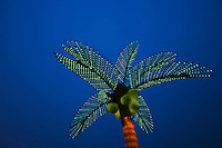 Lighted palm tree shines against a blue sky at night<br />