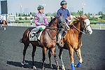 Ami's Holiday(15) with Jockey Luis Contreras aboard at the 155th Queen's Plate at Woodbine Race Course in Toronto, Canada on July 06, 2014.