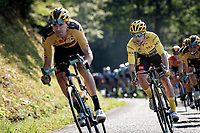 yellow jersey / GC leader Primoz Roglic (SVK/Jumbo-Visma) coming down the Selle de Fromentel<br /> <br /> Stage 15 Lyon to Grand Colombier (175km)<br /> <br /> 107th Tour de France 2020 (2.UWT)<br /> (the 'postponed edition' held in september)<br /> <br /> ©kramon