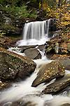 The 36' R.B. Ricketts Falls in Ricketts Glen State Park, Pennsylvania