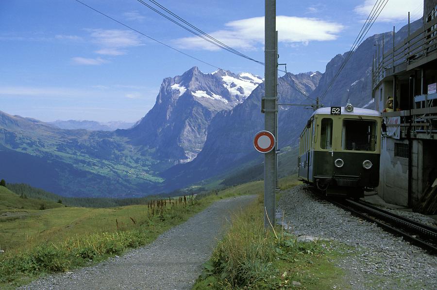 Cog train arriving in Grindelwald Valley, Weterhorn Mountain in background, Klien Sheidegg, Swiss Alps, Switzerland