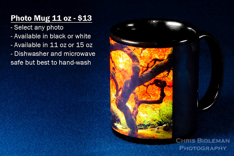 """Coffee Mug 11oz Black - Have any photo from Chris Bidleman Photography collection on your cup.  Available in white mug too.<br /> <br /> To order, select your photo from the library, pick the """"buy"""" button, and go to the """"products"""" tab to select your size and color."""