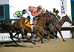 10 January 30: Horses in the 1st race pass the wire the first time prior to the 16th running of the grade 3 John B. Connally Turf Handicap for three year olds and upward at Sam Houston Race Park in Houston, Texas.