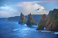 SC - Prov. Caithness<br /> Duncansby Head and Duncansby Stacks near John o 'Groats<br /> <br /> Full size: 69,2 MB