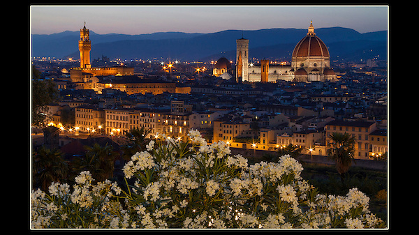 Italy, Florence.  Location Scout. <br /> Find locations to photograph and return when conditions are better. I got lucky here. Behind me was a powerful light from the Michel Angelo Square parking lot, that lit these flowers quite naturally.
