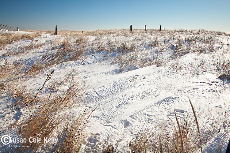 Snow-covered dunes on Drakes Island in Wells, ME, USA