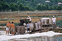 Europe/Croatie/Dalmatie/Ston: les marais salants, récolte du sel