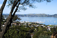 Marin County California from above hill of the beautiful city of Sausalito and the water ba