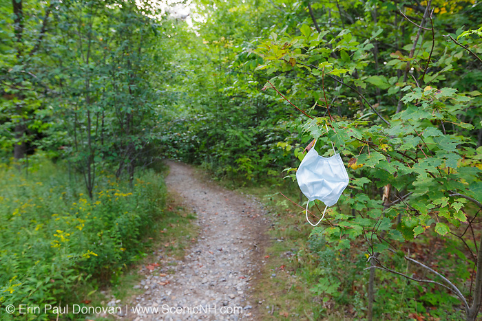 Mask hanging from a tree along the Georgiana Falls Path in Lincoln, New Hampshire during the summer of 2020 (COVID-19 pandemic).