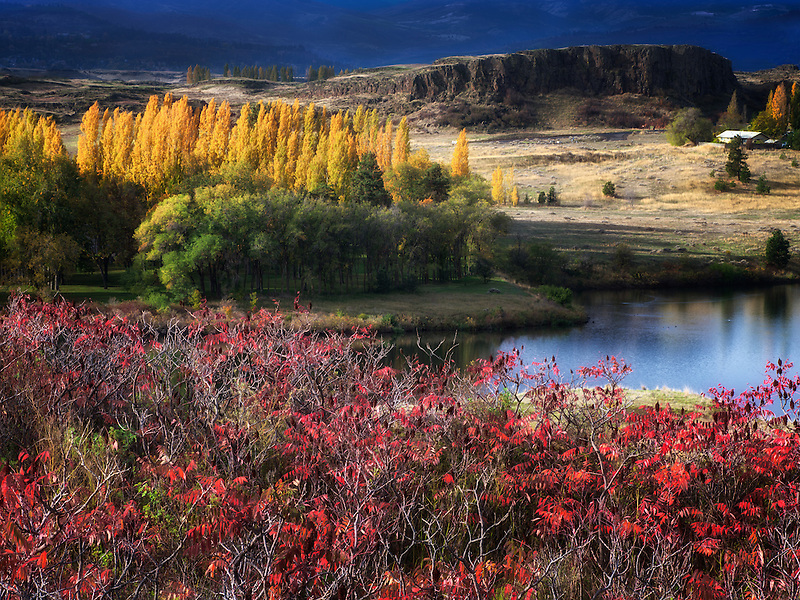 Fall color at Horesthief Lake State Park, Washington. Columbia River Gorge National Scenic Area