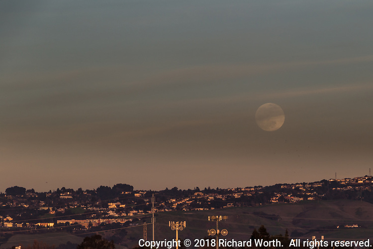 The gibbous moon rises over the Hayward, California, hills.   Within hours it will be full, blue and eclipsed.  But not yet.  Now, it's just a gibbous moon rising.