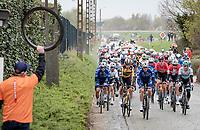 peloton passing through the Holleweg<br /> <br /> 105th Ronde van Vlaanderen 2021 (MEN1.UWT)<br /> <br /> 1 day race from Antwerp to Oudenaarde (BEL/264km) <br /> <br /> ©kramon