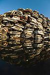 Automobile scrap metal recycling
