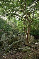 Cinnamon Bay Ruins<br /> Virgin Islands National Park<br /> St. John<br /> U.S. Virgin Islands