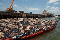 A Tragédia do Navio Haidar