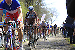 Riders, including Johan Van Summeren (BEL) AG2R La Mondiale, tackle Sector 18 la Trouee de Arenberg during the 113th edition of the Paris-Roubaix 2015 cycle race held over the cobbled roads of Northern France. 12th April 2015.<br /> Photo: Eoin Clarke www.newsfile.ie