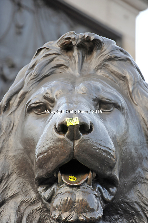 """One of the lions at the base of Nelsons Column in Trafalgar Square in London is defaced with a """"Bollocks to Brexit"""" sticker during the """"Put it to the People"""" rally which made it's way through central London today. Demonstrators from across the country gathered to call for a second referendum on Brexit and to march through the UK capital finishing with speeches in Parliament Square opposite the Houses of Parliament in Westminster."""