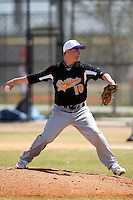 March 15, 2010:  Pitcher Jeff Jackson (10) of the Fontbonne University Griffins in a game vs. Roger Williams University Hawks at Lake Myrtle Park in Auburndale, FL.  Photo By Mike Janes/Four Seam Images