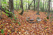 Two stone steps covered in leaf drop along the Mt Tecumseh Trail in the New Hampshire White Mountains on an autumn day in 2020. When building stone steps along a trail, the norm is to place scree (rocks) or brush alongside the steps. The latter is usually done because it looks natural. Placing the scree and / or brush on the side of the steps discourages hikers from going around the steps, and potentially creating more trail erosion issues.