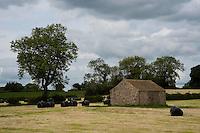 Stone barn with big bales of silage, near Masham, North Yorkshire.