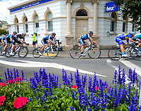 UCI Oceania Tour - NZ Cycling Classic stage one - Masterton to Martinborough circuit in Wairarapa, New Zealand on Thursday, 21 January 2016. Photo: Charley Lintott / lintottphoto.co.nz
