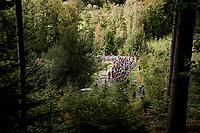 up the Col du Rosier<br /> <br /> 106th Liège-Bastogne-Liège 2020 (1.UWT)<br /> 1 day race from Liège to Liège (257km)<br /> <br /> ©kramon