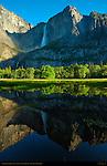 Yosemite Falls Reflected in Cook's Meadow at Sunrise, Yosemite National Park