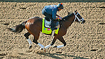 April 27, 2015: Materiality, trained by Todd Pletcher, exercises in preparation for the 141st Kentucky Derby at Churchill Downs in Louisville, Kentucky. John Voorhees/CSM