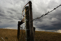 A gate and barbed-wire farm fence stands at the edge of fields outside Fort Shaw, Montana, USA.