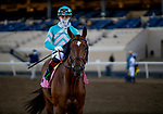 November 28, 2020: Fluffy Socks with Irad Ortiz Jr. wins the  Jimmy Durante Stakes at Del Mar Racecourse in Del Mar, California on November 28, 2020. Evers/Eclipse Sportswire/CSM