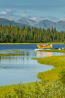 Bush plane on floats in tundra pond along the Glenn Highway, Alaska