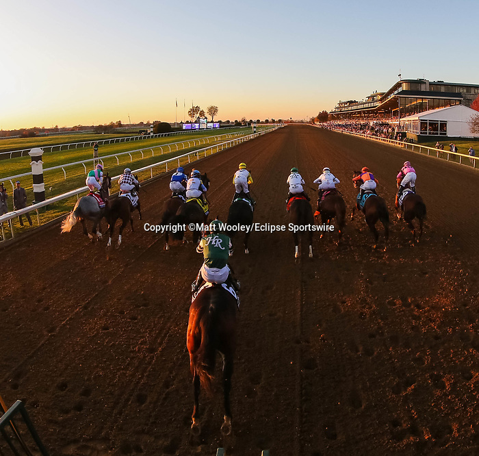 November 7, 2020 : Horses break out of the starting gate during the Longines Classic on Breeders' Cup Championship Saturday at Keeneland Race Course in Lexington, Kentucky on November 7, 2020. Matt Wooley/Eclipse Sportswire/Breeders' Cup/CSM