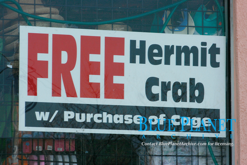 Free Hermit Crab with purchase of Cage sign appears at a store near the boardwalk in Oceancity, Delaware.