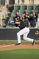 Michael Suiter (29) of the Kannapolis Intimidators squares to bunt against the West Virginia Power at CMC-Northeast Stadium on April 21, 2015 in Kannapolis, North Carolina.  The Power defeated the Intimidators 5-3 in game one of a double-header.  (Brian Westerholt/Four Seam Images)