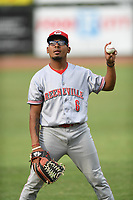 Peterson Plaz (6) of the Greeneville Reds warms up prior to a game against the Bristol Pirates at Boyce Cox Field on July 31, 2019 in Bristol, Virginia. The Pirates defeated the Reds 13-3. (Tracy Proffitt/Four Seam Images)