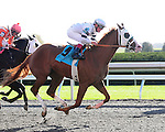Will Take Charge and Jon Court win the 7th race at Keeneland Racecourse.October 18, 2012.