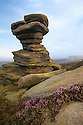 A millstone grit formation known as the 'Salt Cellar' on Derwent Edge, with Common Heather / Ling {Calluna vulgaris} in bloom. Peak District National Park, Derbyshire, UK. September.